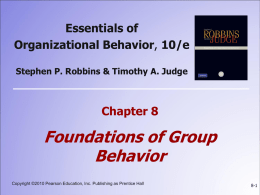 8: Foundations of Group Behavior