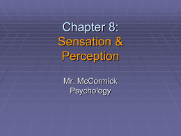 Chapter 8: Sensation and Perception