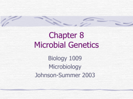 Chapter 8 Microbial Genetics