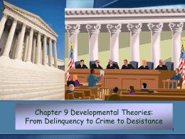 Chapter 9 Developmental Theories