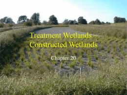 Treatment Wetlands Constructed Wetlands