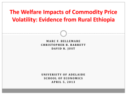 The Welfare Impacts of Commodity Price Volatility: Evidence from
