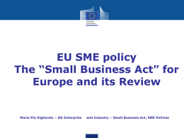 "The ""Small Business Act"" for Europe and its Review"