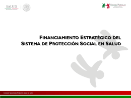Panel-6-FinanciamientoEstrategicoSS