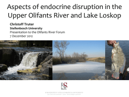 Lake Loskop - Olifants River Forum