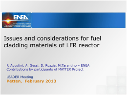 Issues and considerations for fuel cladding materials of