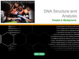 Chapter 4 Background DNA Structure and Analysis