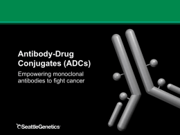 Elements of an Antibody-Drug Conjugate (ADC)