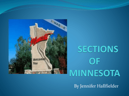 SECTIONS OF MINNESOTA - geo