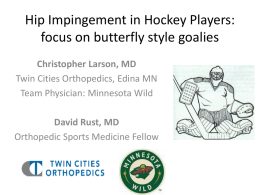 Hip Impingement in Hockey Players: focus on butterfly