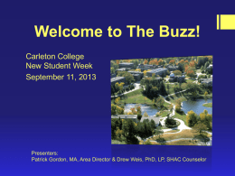 Powerpoint Presentation of The Buzz! 2013