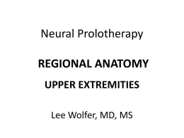 NEURAL PROLOTHERAPY
