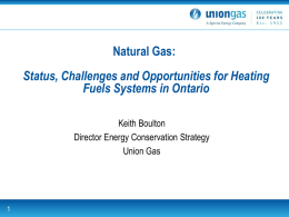 Natural Gas: Status, Challenges and Opportunities