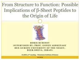 From structure to function: possible Implications of beta-sheet
