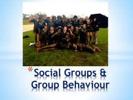 Social Groups & Group Behaviour