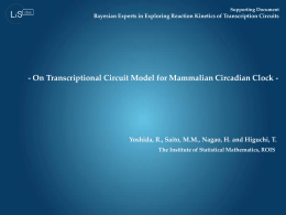 Mathematical details on the circadian clock transcription circuit with