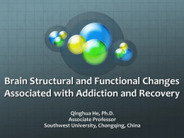 Brain Structural and Functional Changes Associated with Addiction