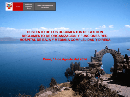 sustento-de-documentos-de-gestion-rof-2014-real
