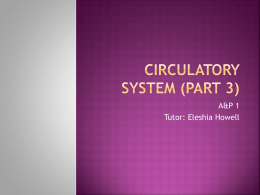 AAP_PowerPoint_Circulatory_System_3