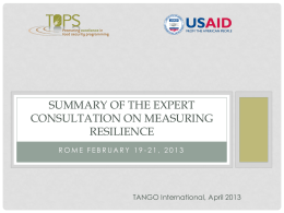 Expert Consultation on Measuring Resilience
