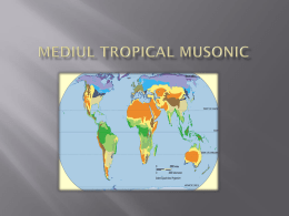Mediul tropical musonic INDIA:Coasta Malabar si