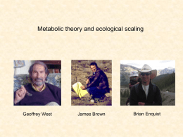 Metabolic theory