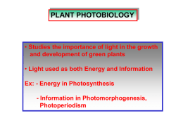 Photobiology lecture