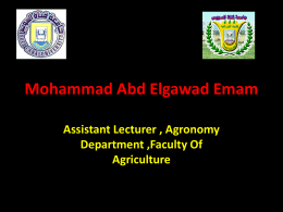 Mohammad Abd-Elgawad Emam - The Six International Conference