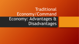 Traditional Economy: Advantages & Disadvantages