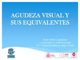 2ra Clase taller BV 2014 ONCE agudeza visual y sus