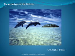 The Archetype of the Dolphin