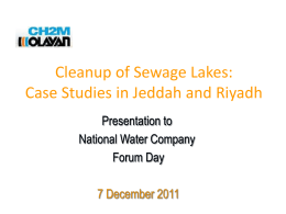 Clean Up of Sewage Lakes