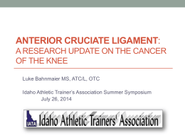 A research update on the cancer of the knee