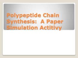 Polypeptide Chain Synthesis: A Paper Simulation