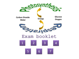 Respiration & Photosynthesis exam booklet