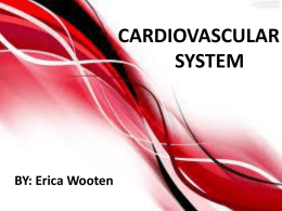 CARDIOVASCULAR SYSTEM BY