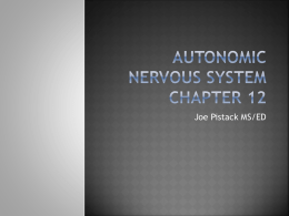 PPT12Chapter12Autonomicnervoussystem