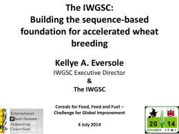 PPT - International Wheat Genome Sequencing Consortium