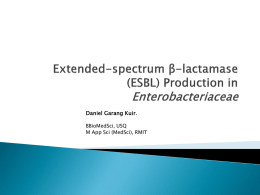 (ESBL) Production in Enterobacteriaceae