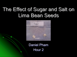 The Effect of Sugar and Salt on Lima Bean Seeds - SMS-HB09