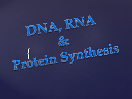 DNA RNA Protein Synthesis Presentation