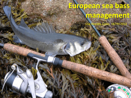 Lisa Readdy – Seabass management