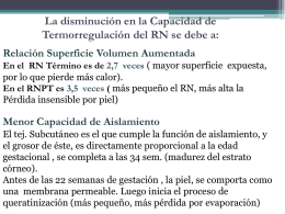 termorregulacon 2