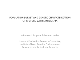 population survey and genetic characterization of muturu cattle in