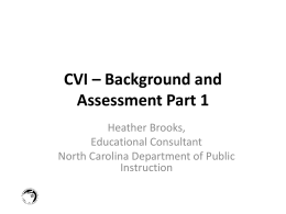 CVI – Background and Assessment - No Videos