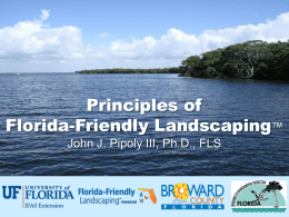 Florida-Friendly Landscaping Principles