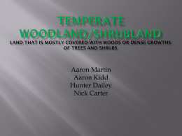 Temperate Woodland/Shrubland