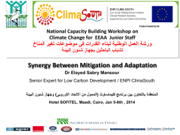 Synergy Between Mitigation and Adaptation