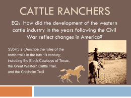 Cattle ranchers PPT