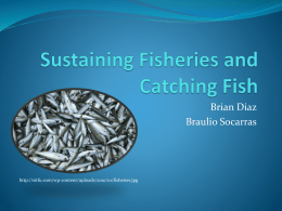 fisheries powerpoint - Mater Academy Charter Middle/ High